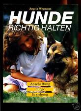 Hund-richtig halten-Anschaffung,Pflege,Erziehung-