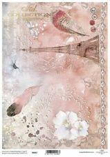 Printed Translucent Vellum Scrapbook  Paper A4 Paris Pink