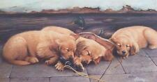 Jim Killen Golden Dreams Golden Retriever S/N AP 28 x 15