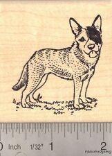 Australian Cattle Dog Rubber Stamp (Blue Heeler) J14614 WM