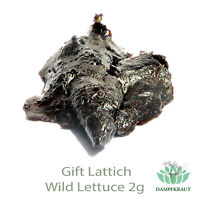 2 Gramm Gift Lattich HARZ KONZENTRAT (Wild Lettuce) (Lactuca virosa) resin