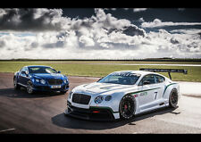 BENTLEY CONTINENTAL GT3 RACER NEW A2 CANVAS GICLEE ART PRINT POSTER FRAMED