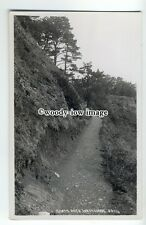 tp9083 - Devon - Walking up Goats Path in Watcombe Hills - postcard - Chapman