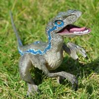 Jurassic Blue Dinosaur Velociraptor Toy Educational Model Gift C3O4
