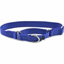 PetSafe Dog Collars