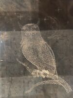 Vintage Square Crystal Owl Paperweight Art Glass Clear