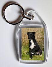 Patterdale Terrier  Key Ring By Starprint