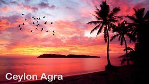 BEAUTIFUL SUNSET PHOTO FREE PHOTO 6K PICTURE VIRTUAL FILE JPG POSTCARD #01