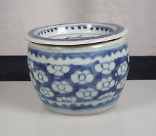 Chinese Blue & White Porcelain Prunus Cricket Box Jar