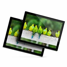 2 x Glass Placemats 20x25 cm - Nanday Parakeet Birds Bird Parrot  #24004