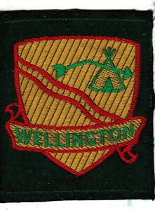 Boy Scout Badge ribbon Ext WELLINGTON ONT CANADA