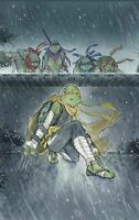 🔥 TMNT JENNIKA #3 PEACH MOMOKO VIRGIN VARIANT TEENAGE MUTANT NINJA TURTLES!