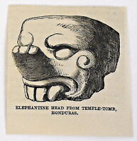 small 1883 magazine engraving ~ ELEPHANTINE HEAD FROM TEMPLE-TOMB, HONDURAS v. 2