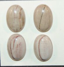 Petrified Wood Cabochons 13x18mm with 5.5mm Dome  Set of 4 (9717)