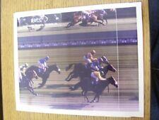 17/08/1996 Horse Racing: Newbury Race Course, Race 7 - Photo Finnish Original Ph