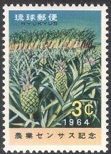 Ryukyus 1964 Piñas/Caña de Azúcar/Agricultura/Comida/Fruit // plantas/naturaleza 1v (n42857)