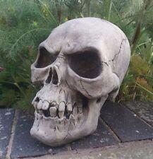 STONE GARDEN GIANT HEAVY SKULL GOTHIC HUMAN HEAD ORNAMENT STATUE