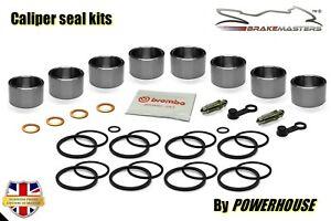 Triumph Speed Triple 1050 front brake caliper piston seal rebuild kit set 2009