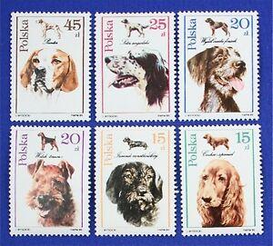 Z69 POLAND 1989 stamp set of 6 Dogs Mint NH