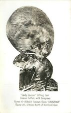 Beaver Towne Show Canadiana RPPC near Montreal Quebec Lady Laurier Postcard