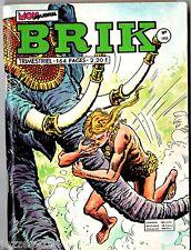 ~+~ BRIK n°166 ~+~ 1974 MON JOURNAL