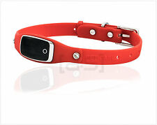 Hundehalsband inkl. GPS Tracker in Rot, Peilsender, GPS, Pet Care, Ortung
