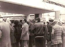 FOTO DEL 1980 - FIERA AGRICOLA - LAVERDA - FIAT - (C9-357)