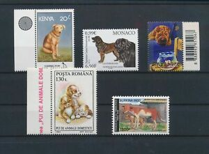 LO13746 World pets animals dogs fine lot MNH