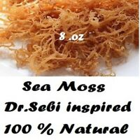 Whole Leaf Irish Moss Sea Moss 8 Oz | Raw WildCrafted Superfood