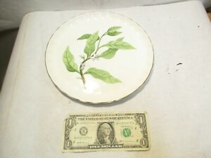 "vintage W.S. George Orange Blossom 8"" Dinner Plate that is in good shape - NR"