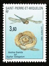 Saint Pierre et Miquelon Y&T N° 560  N** MNH TTB Faune et Flore 1992
