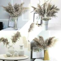 Artificial Dried Pampas Grass Gray Reed Flower Bunch Bouquet Wedding Party Decor