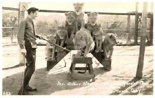RPPC,El Monte,CA.Gays Lion Farm,Arthur West & Cubs,San Gabriel Valley,c.1937>