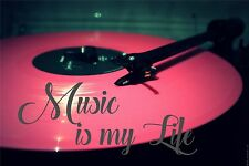 Music Is My Life Color Wall Sticker Mural 3 FT Pink Record