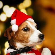 Cálido Mascota Gato Perro Sombrero De Santa Claus Navidad Cap Decoración  Pet Cachorro regalo de Navidad Fiesta 98b4d78d46f