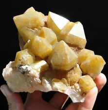 Large Crystals Scepter YELLOW QUARTZ - Orange River, NAMIBIA ! (rare not red !)