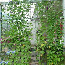 Plant Trellis Nylon Netting Net Mesh Growing Vegetable Support Crop Load Garden