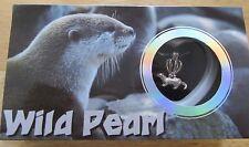 Wild Pearl- Sea Otter Necklace & Pendant- genuine pearl in oyster- pretty box