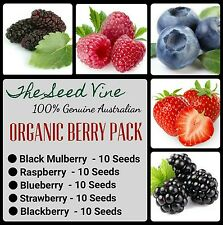 ORGANIC BERRY SEED PACK (Mulberry Raspberry Blueberry Black Strawberry) SAVE $5