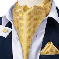 Mens Ascot Neck Tie Jacquard Silk Novelty Scarves Cravat Pocket Square Cufflinks