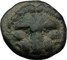 Rhegion in Bruttium (Italy) 351Bc Ancient Greek Coin Lion facing Apollo i31217