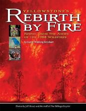 Yellowstone's Rebirth by Fire: Rising from the Ashes of the 1988 Wildfires