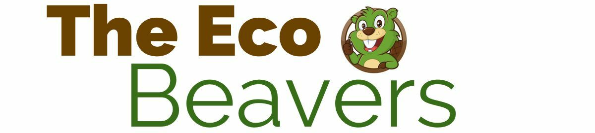 EcoBeavers - save energy at home!