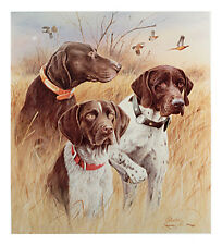 GERMAN SHORTHAIRED POINTER GSP DOG FINE ART LIMITED EDITION PRINT by Jim Killen
