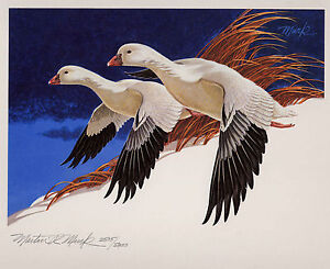 RW44 1977 FEDERAL  DUCK STAMP PRINT ROSS' GEESE by Martin Murk List $400
