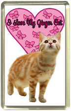 I Love My Ginger Cat Fridge Magnet,