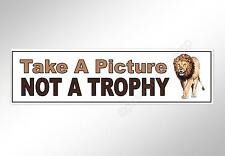 Anti hunting car bumper sticker. Take a picture, not a trophy, lion wildlife