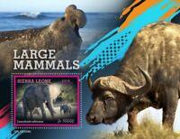 Sierra Leone - 2019 Large Mammals - Stamp Souvenir Sheet - SRL190504b