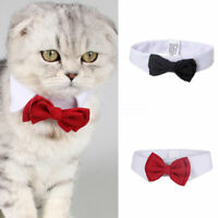 Dog Cat Adjustable Bowtie Collar Pet Neck Tie Puppy Kitten for Wedding Party