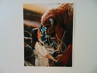 """""""Labyrinth"""" Jennifer Connelly Hand Signed 8X10 Color Photo"""